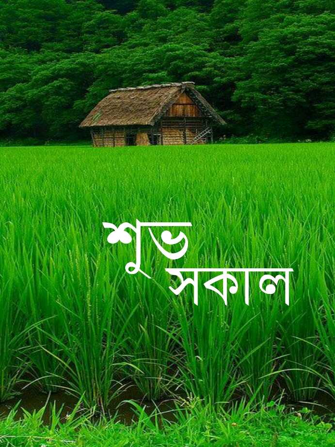 🙌শুভকামনা - শুসকাল - ShareChat