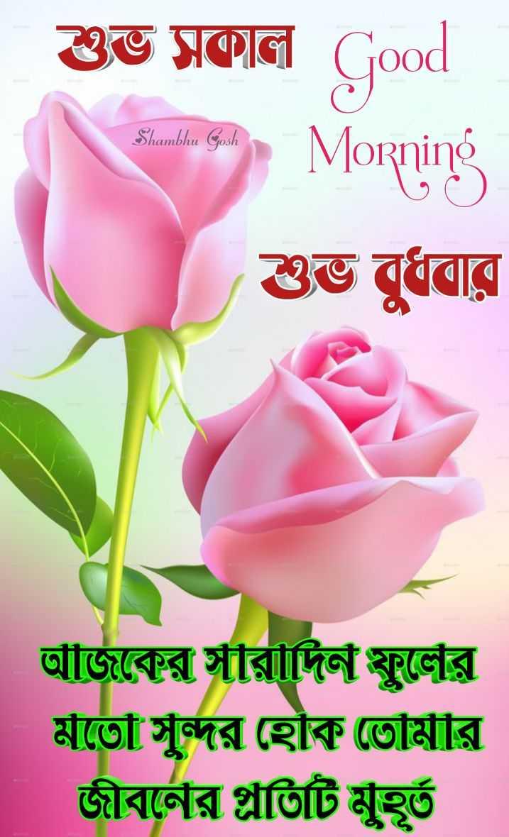 🙌শুভকামনা - শুভ সকাল Good Shambhu Gosh Morning শুভ বুধবার আঁজিকের সীরীদিন স্কুলের মতো সুন্দর হোক তোমার জীবর্নের গ্লাতিটি মুহূর্ত - ShareChat