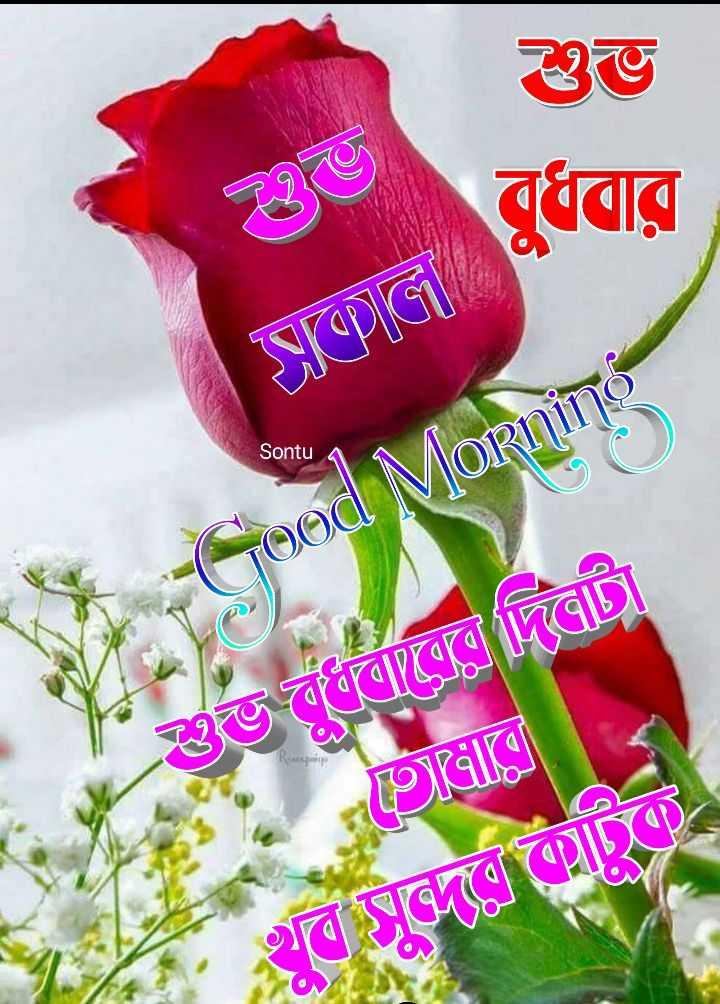 🙌শুভকামনা - ভ Spল Sontu - Good Morning এত দানেলে দিলাটা বদলে - ShareChat