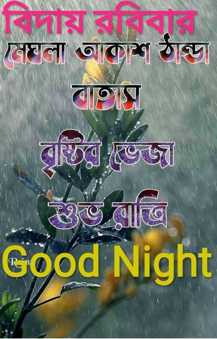 🙌শুভকামনা - বিদায় রবিবার মেঘলা আকাশ ঠান্ডা | বাতায় | বৃষ্টির ভিজা তাভ লাত্রি Good Night - ShareChat
