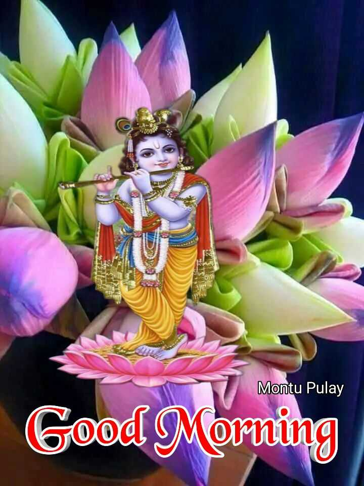 🙌শুভকামনা - Montu Pulay Good Morning - ShareChat
