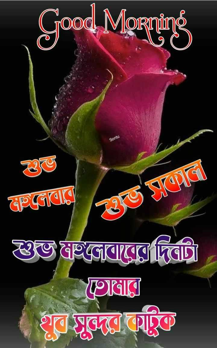 🙌শুভকামনা - Good Morning Sontu Gagad Rভ টেলে Gইজোরেরে দিব । GেIলে দ দেবেন - ShareChat