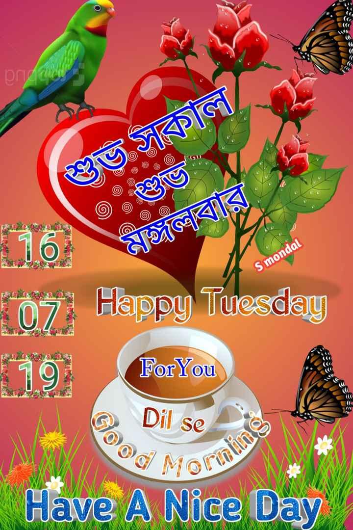 🙌শুভকামনা - pre U SKG - 16 ELT S mondal 107 Happy Tuesday 79 For You Dil se Have A Nice Day - ShareChat