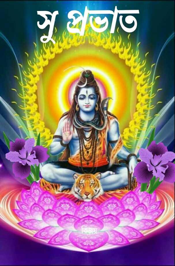 🙌শুভকামনা - সু প্রভাত - ShareChat