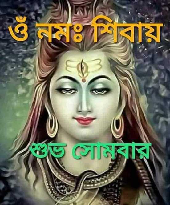 🙌শুভকামনা - ওঁ নমঃ শিবায় তত সেলিবার - ShareChat