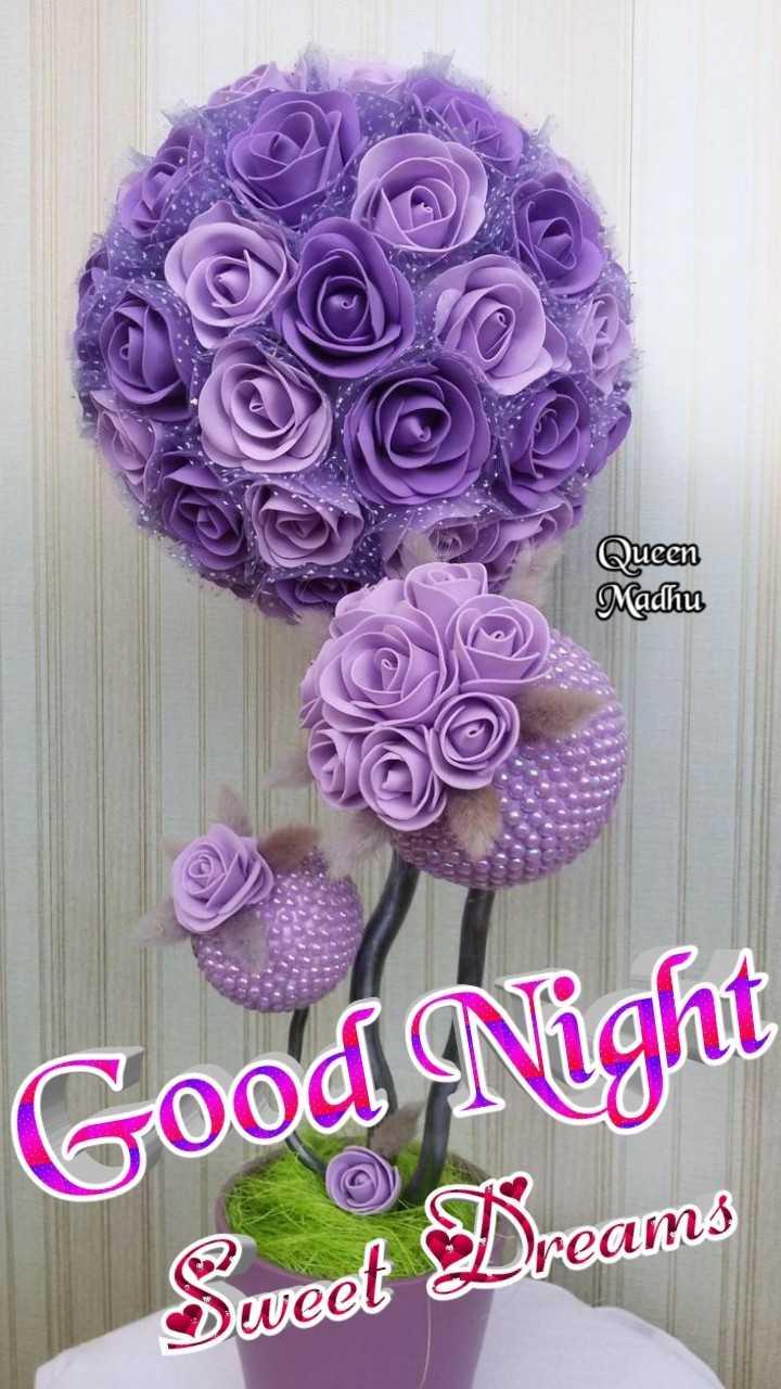 🙌শুভকামনা - Queen Madhu Good Night Seved Dreams - ShareChat