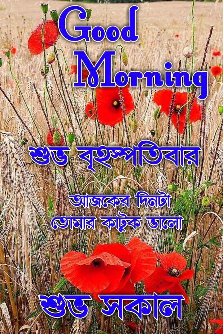 🙌শুভকামনা - Good Mornin ( শু বতিবার | অজয়ে দিতাছী ভারি কাটুক ডাকো ( তে ভG - ShareChat