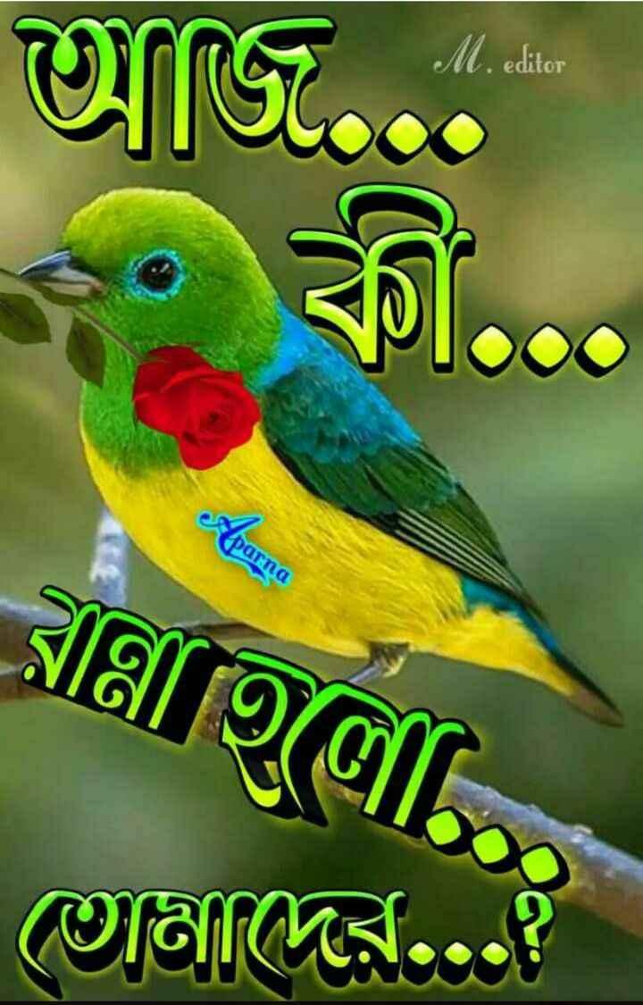 🌝শুভ দুপুর - আজ . . কী . . . parna বাহিলো তােমাদের . . . ? - ShareChat