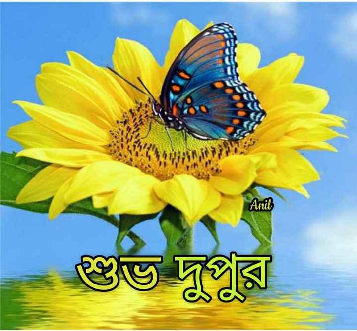 🌝শুভ দুপুর - Anil শুভ দুপুর - ShareChat