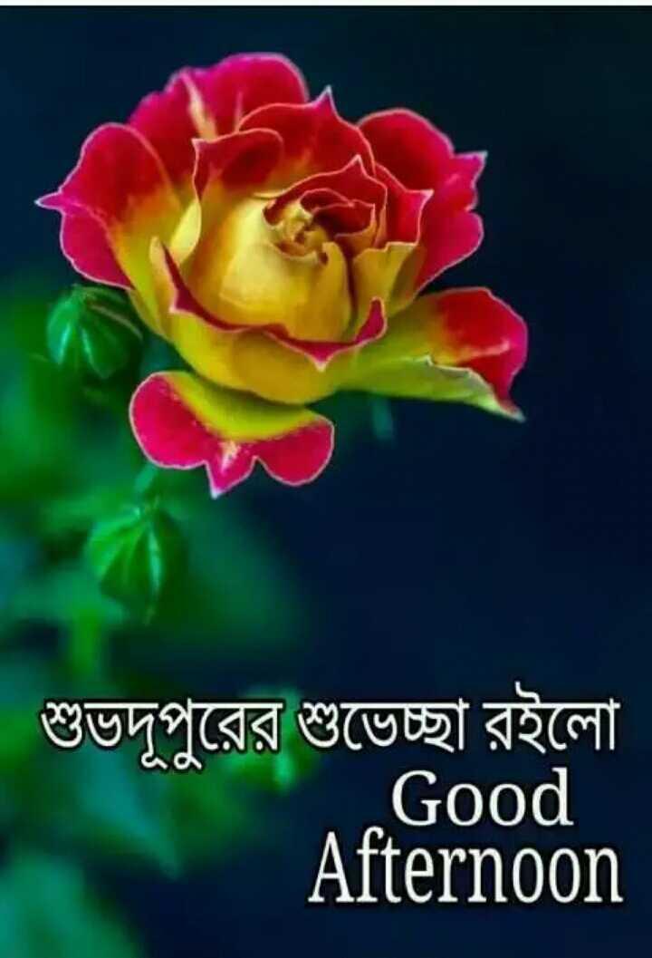 🌝শুভ দুপুর - শুভদূপুরের শুভেচ্ছা রইলাে Afternoon Good - ShareChat