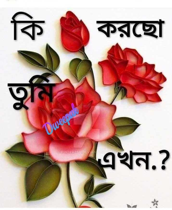 🌝শুভ দুপুর - কি করছাে Dweeper এখন . ? - ShareChat