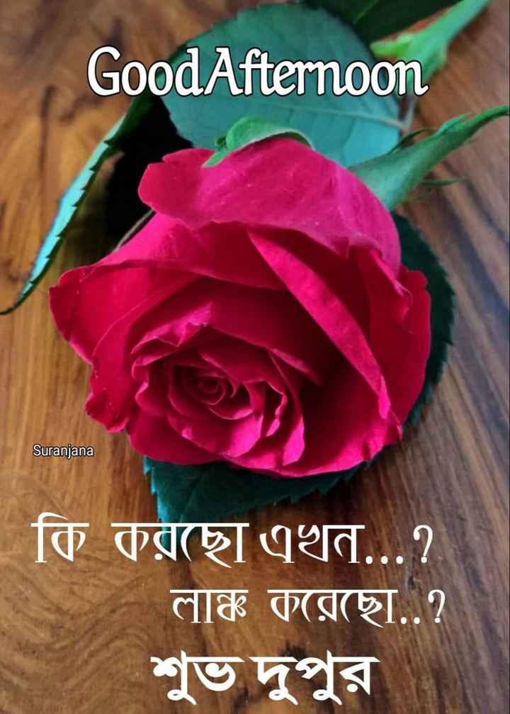 🌝শুভ দুপুর - Good Afternoon Suranjana | কি করছাে এখন . . . ? লাঞ্চ করেছাে . . ? শুভ দুপুর - ShareChat