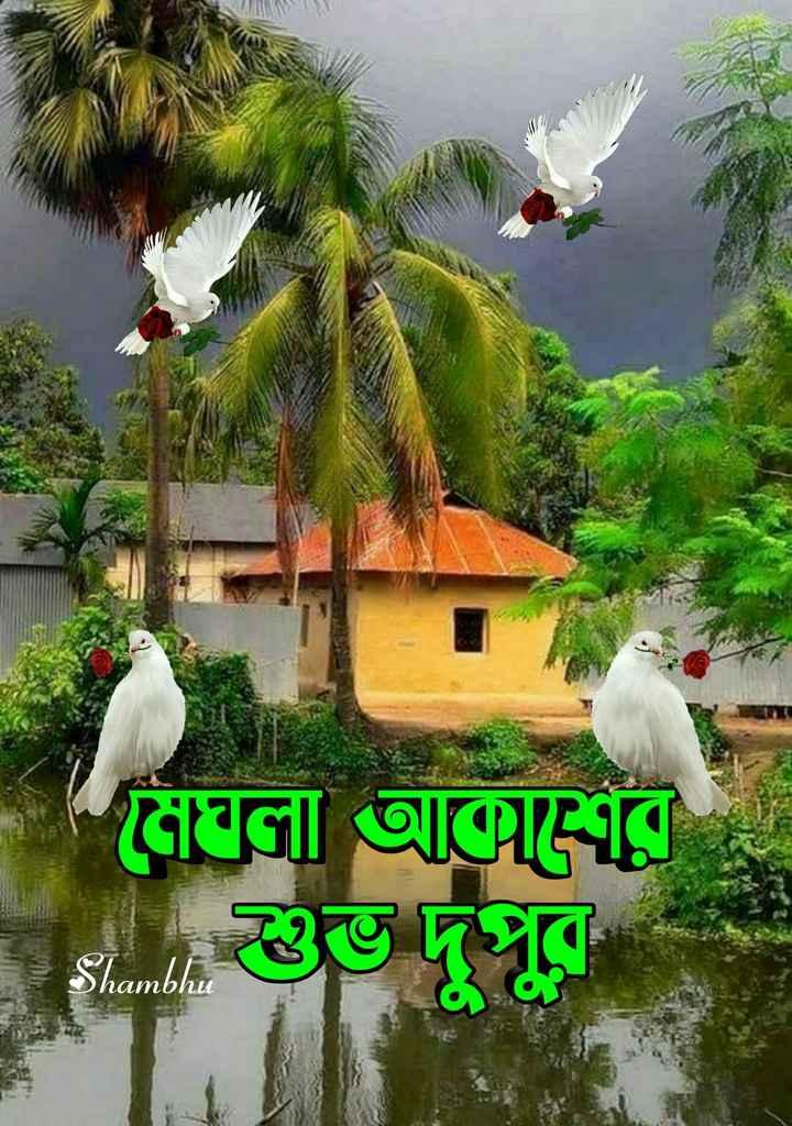 🌝শুভ দুপুর - মেঘলা আর Dhambhu - ShareChat