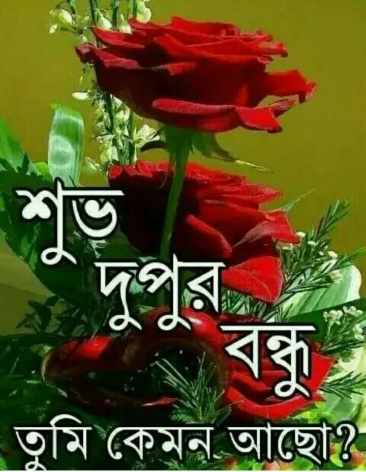 🌝শুভ দুপুর - তুমি কেমন আছাে ? - ShareChat