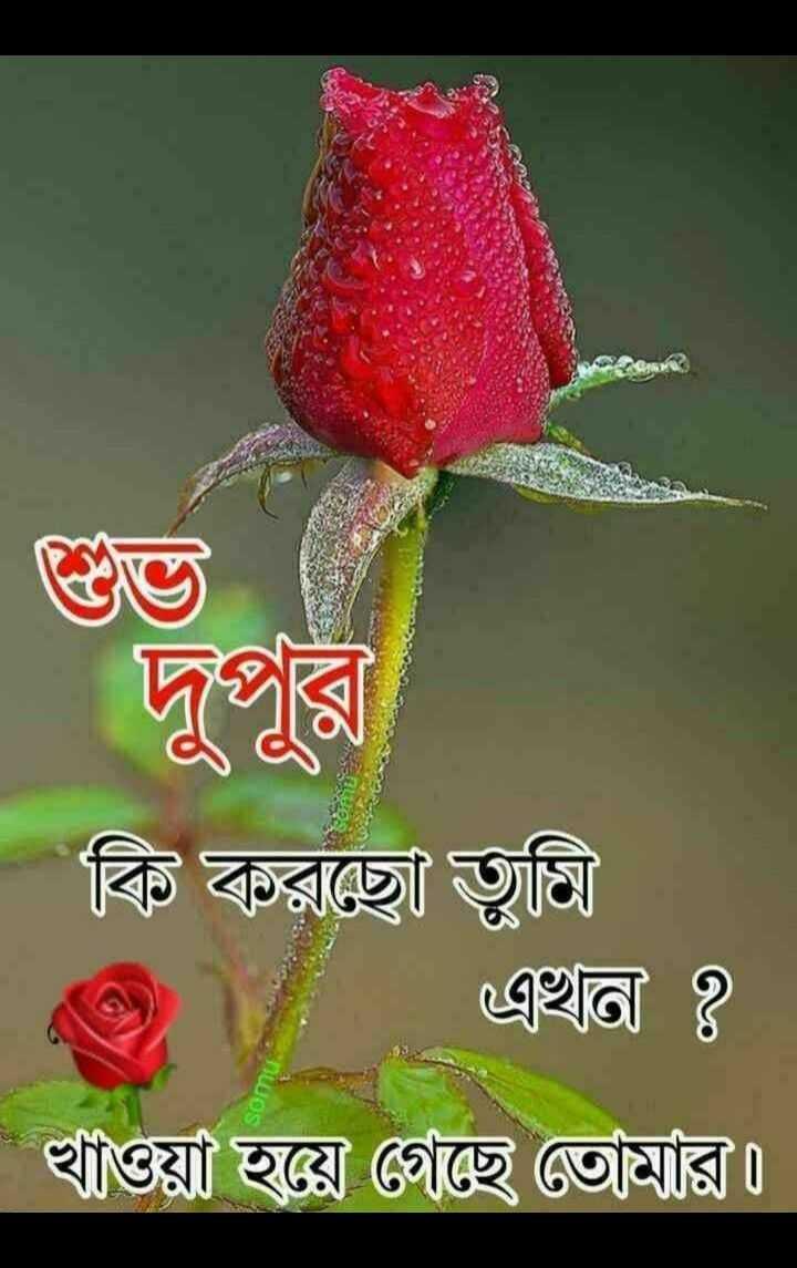 🌝শুভ দুপুর - ShareChat