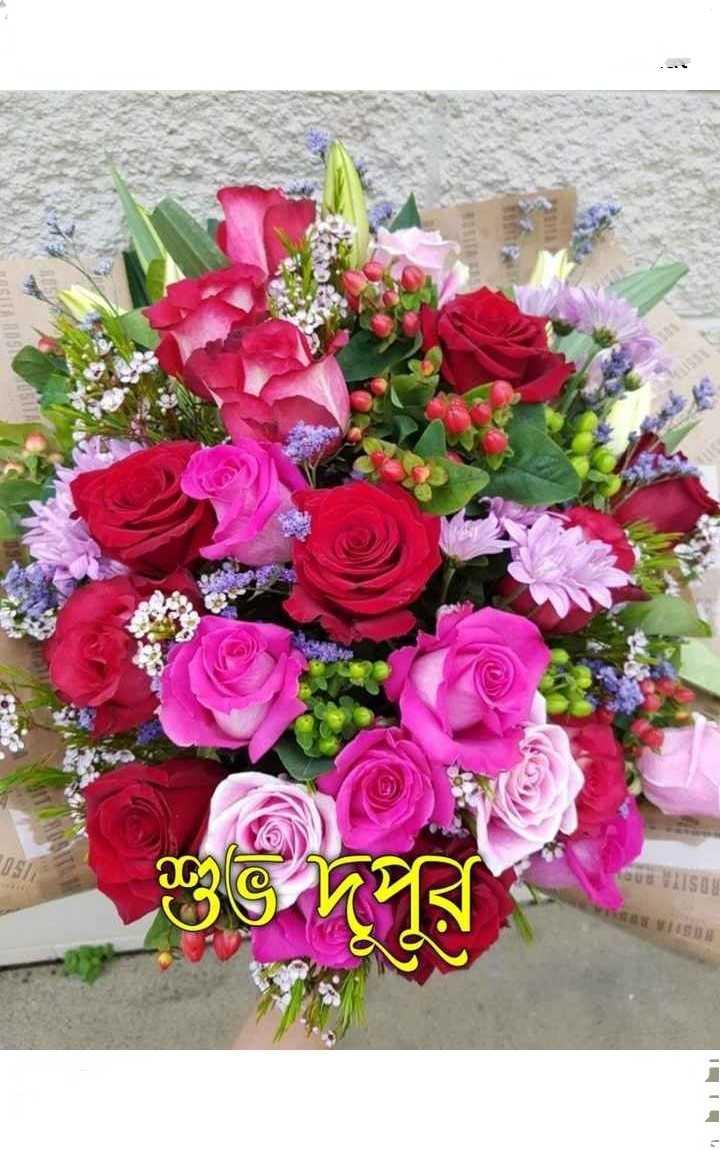 🌝শুভ দুপুর - 01511 RUS ROSTI - ShareChat