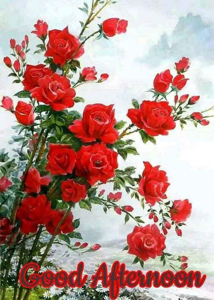🌝শুভ দুপুর - od Afternoon vernoon - ShareChat