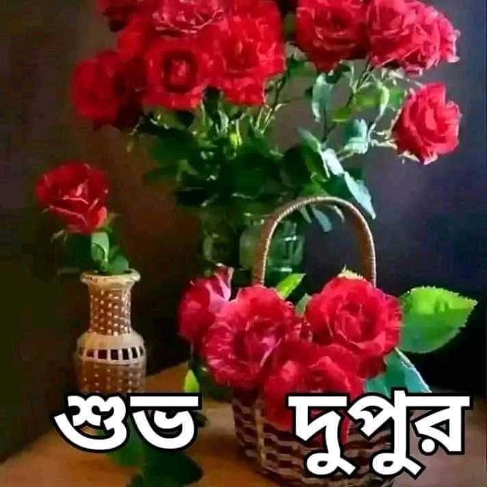 🌝শুভ দুপুর - শুভ দুপুর - ShareChat