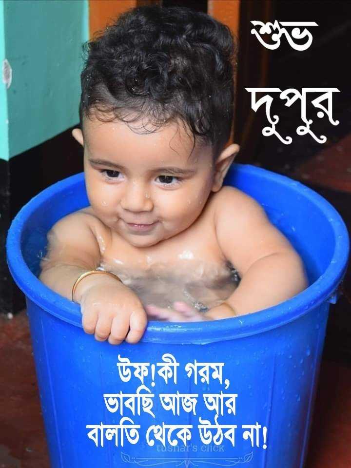 🌝শুভ দুপুর - শুভ উফাকী গরম , ভাবছি আজ আর বালতি থেকে উঠব না ! ar ' s click - ShareChat