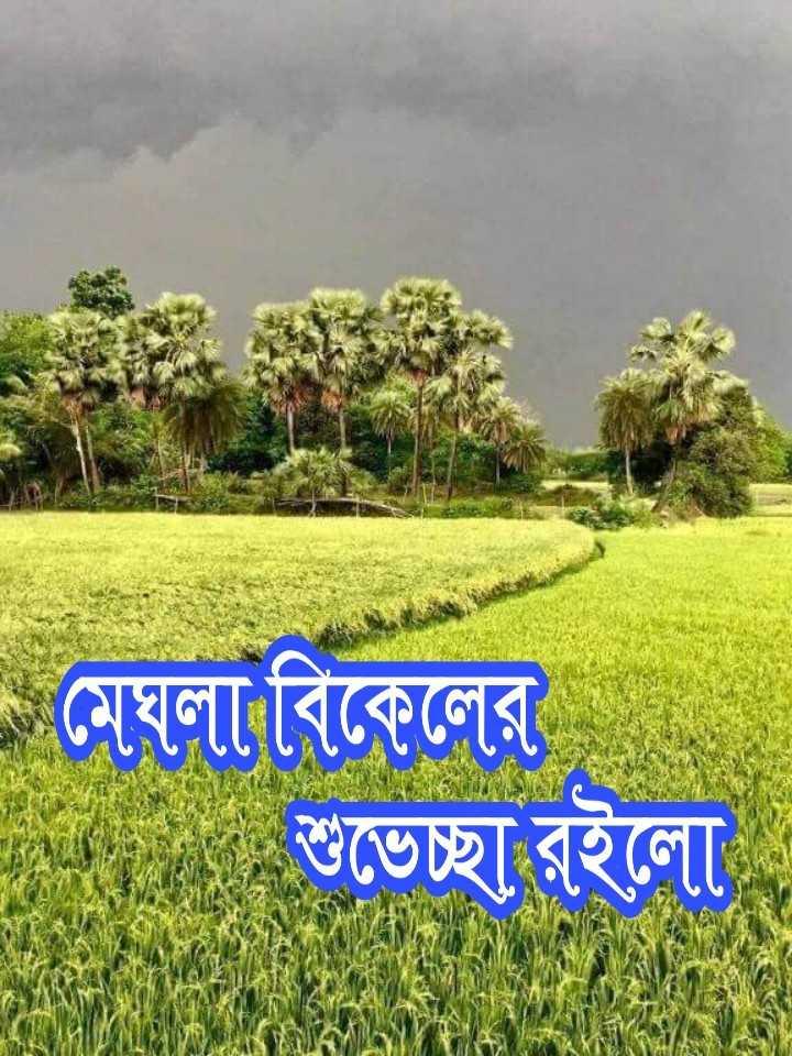 🌕শুভ বিকেল - - মেঘলা বিকেলের শুভেচ্ছা রইলাে - ShareChat