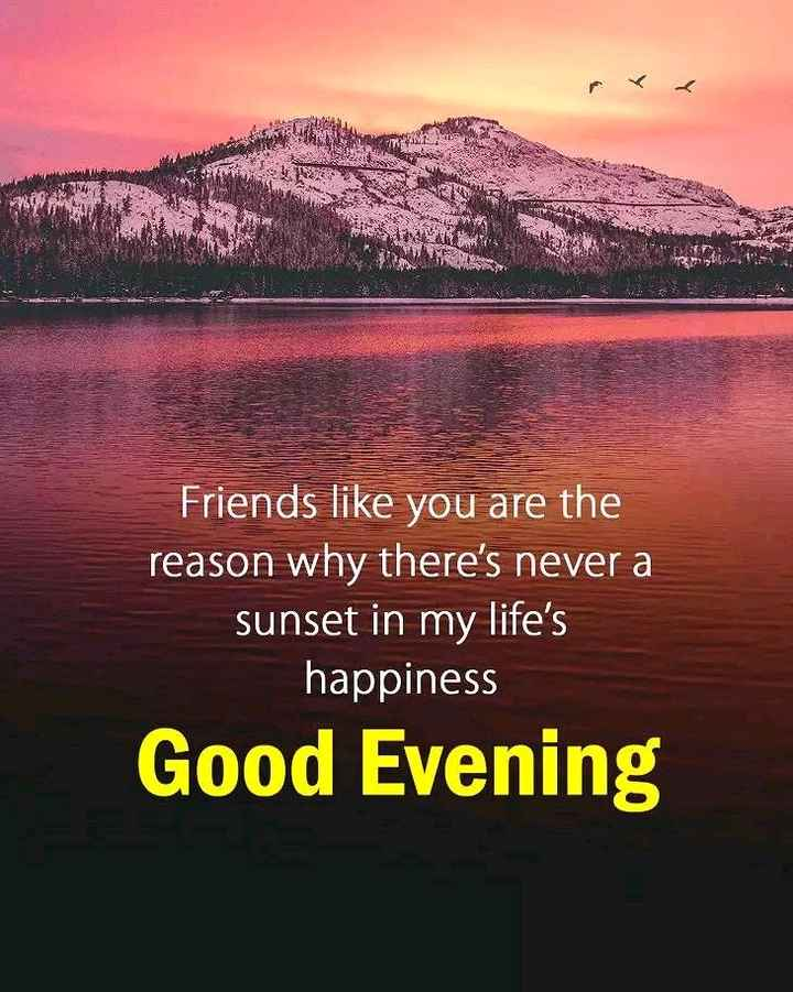 🌕শুভ বিকেল - Friends like you are the reason why there ' s never a sunset in my life ' s happiness Good Evening - ShareChat