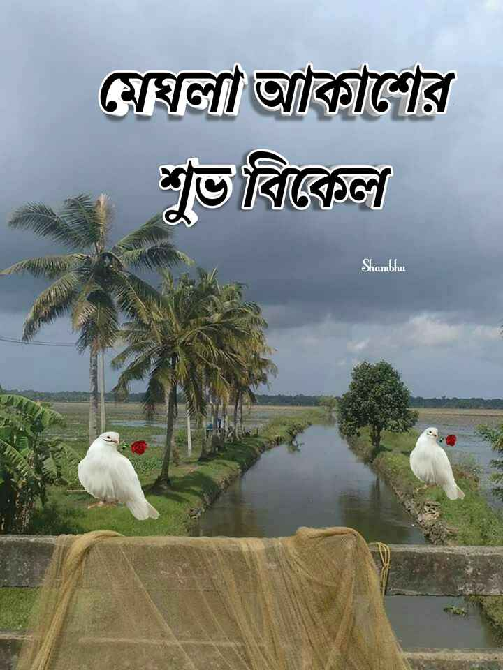 🌕শুভ বিকেল - মেঘলা আকাশের শুভ বিকেল Shambhu . - ShareChat