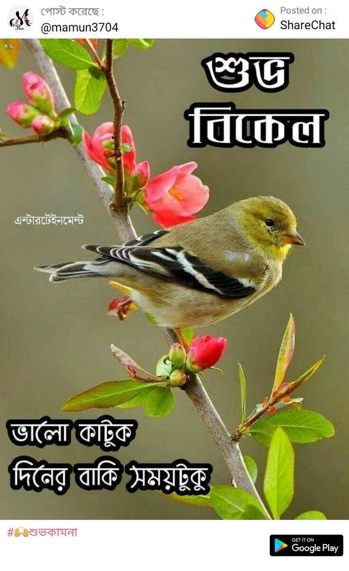 🌕শুভ বিকেল - পােস্ট করেছে : @ mamun3704 Posted on : ShareChat KG | শুভ । বিকেল এন্টারটেইনমেন্ট ভালাে কাটুক দিনের বাকি সময়টুকু # শুভকামনা GET IT ON Google Play - ShareChat