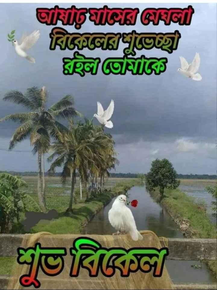 🌕শুভ বিকেল - CirugSiCK PRET RIGAGRICU ঘহাজার শুভবিন্সী - ShareChat