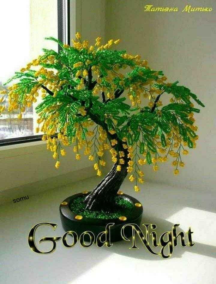 🌑শুভ রাত্রি - Mamina Mumbko somu Good Night - ShareChat