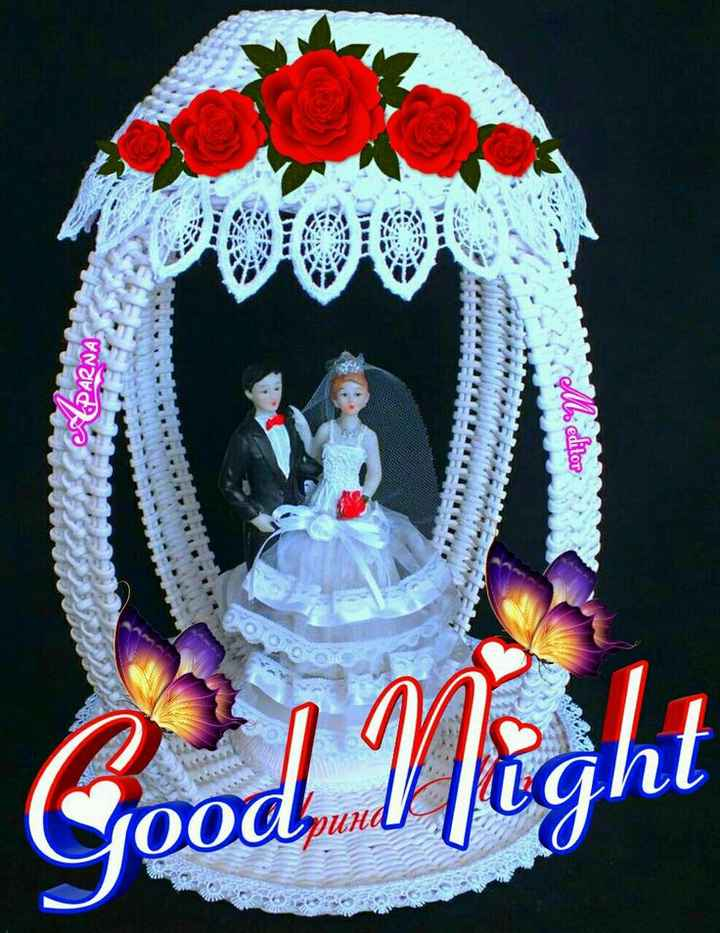 🌑শুভ রাত্রি - PARNA editor Good Night ( Soodpund ! DUHA - ShareChat