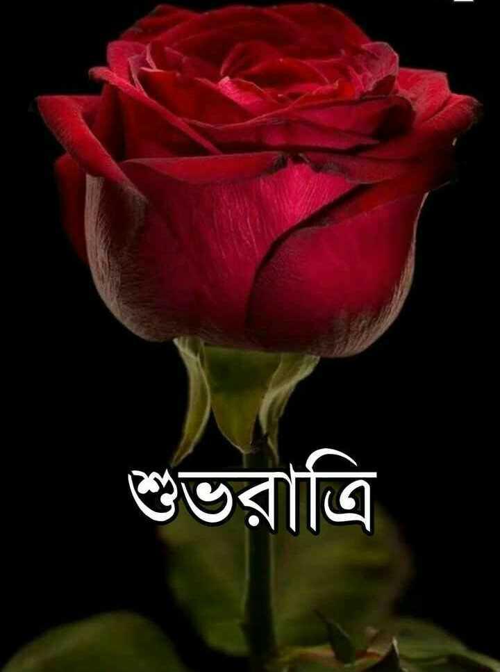 🌑শুভ রাত্রি - শুভরাত্রি - ShareChat