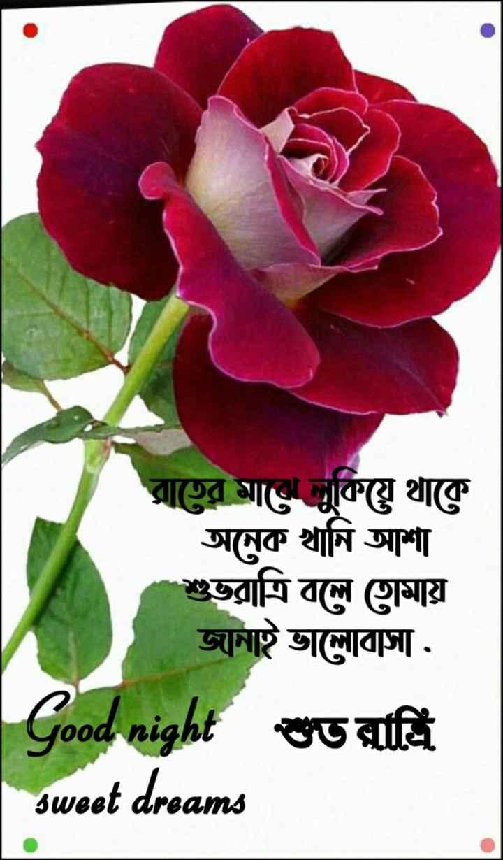 🌑শুভ রাত্রি - রাতের মাঝে লুকিয়ে থাকে অনেক খানি আশা শুভরাত্রি বলে তােমায় জানাই ভালােবাসা . Good শুভ রাত্রি sweet dreams - ShareChat