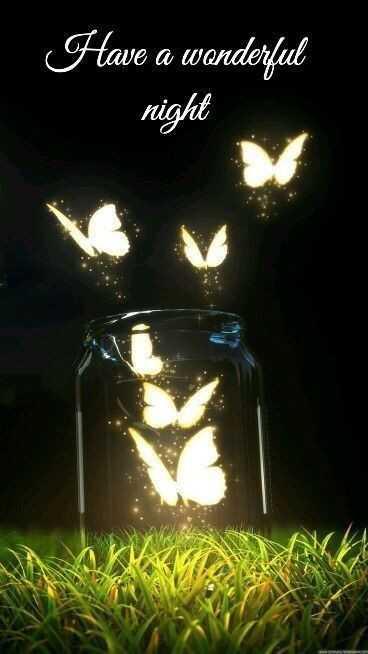 🌟🌟🌟শুভ রাত্রি 🌟🌟🌟 - Have a wanderful night WWWMO - ShareChat