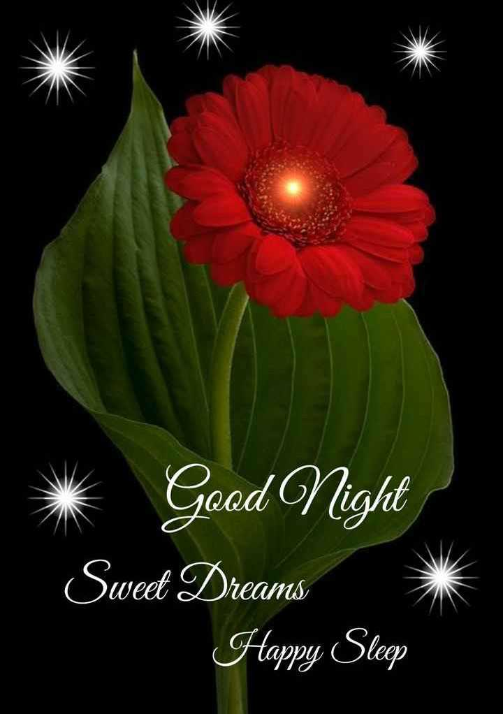 🌑শুভ রাত্রি - Good Night Sweet Dreams Happy Sleep - ShareChat