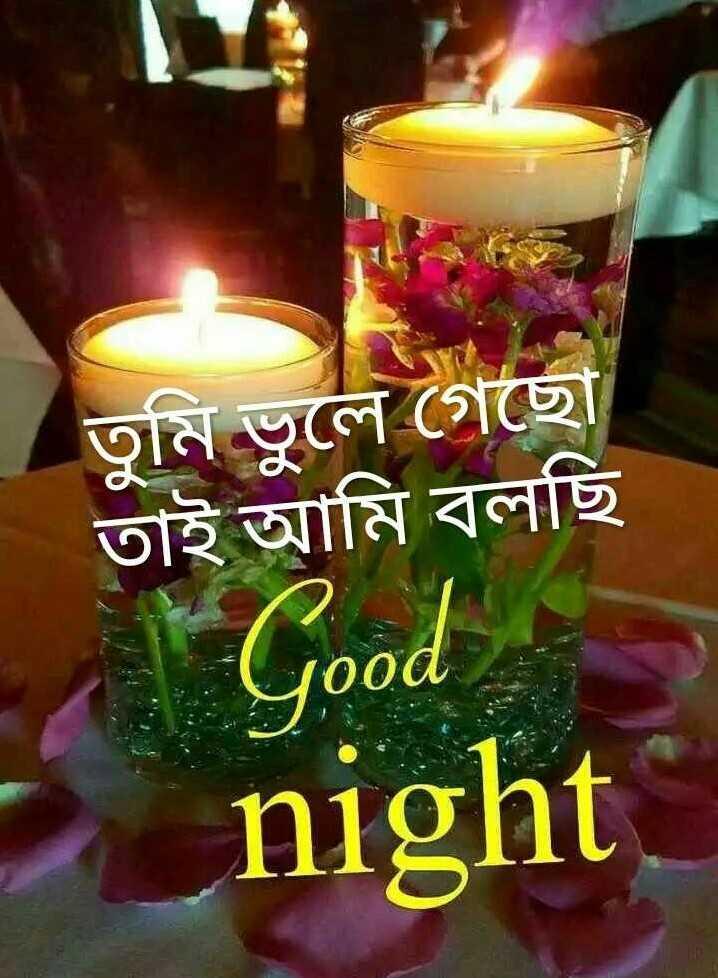 🌑শুভ রাত্রি - তুমি ভুলে গেছাে তাই আমি বলছি Good night - ShareChat