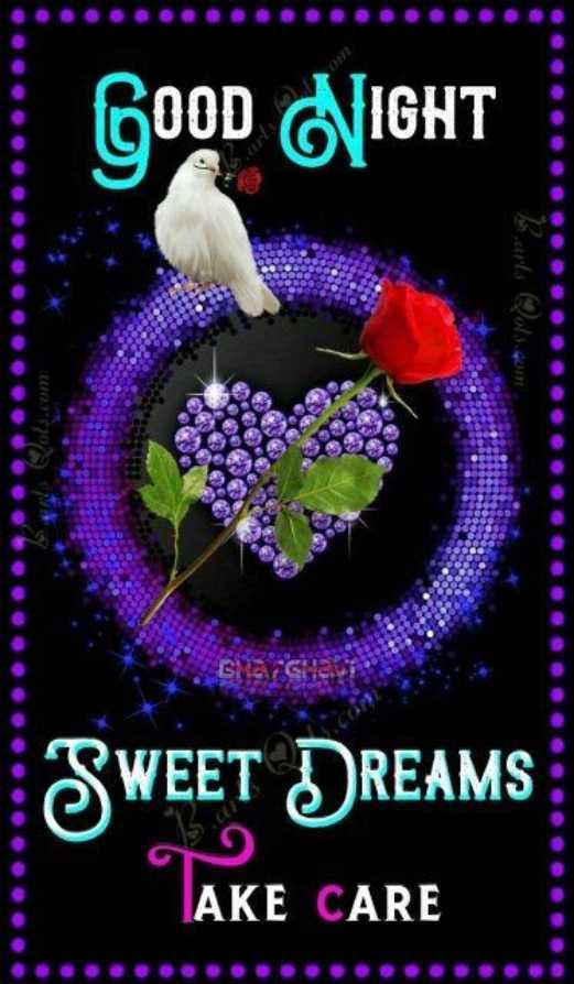 🌑শুভ রাত্রি - Good NIGHT SWEET DREAMS AKE CARE - ShareChat