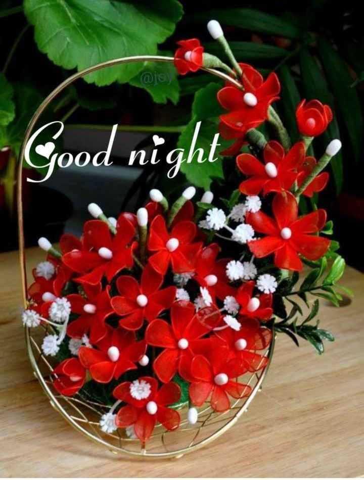 🌑শুভ রাত্রি - @ jo ) Good night - ShareChat