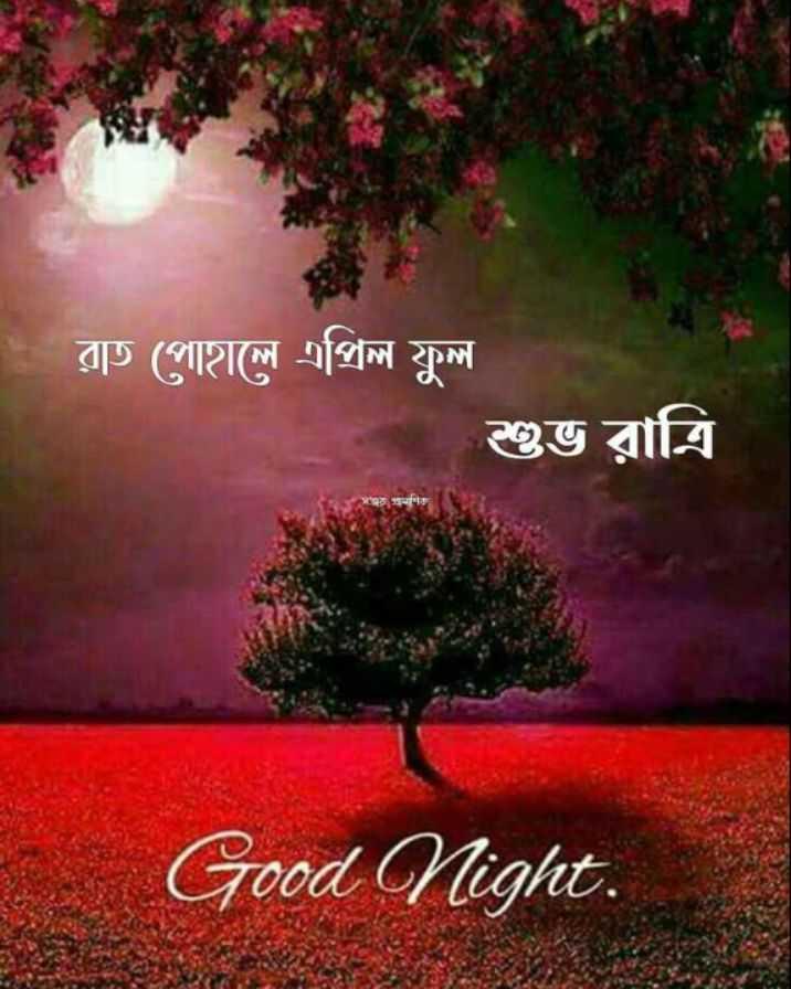 🌑শুভ রাত্রি - - রাত পােহালে এপ্রিল ফুল শুভ রাত্রি সাত গম Good Night . - ShareChat