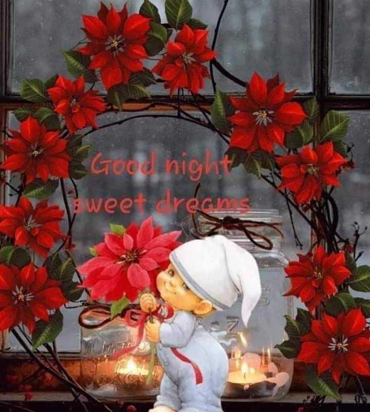 🌑শুভ রাত্রি - Good night ? sweet dreams - ShareChat