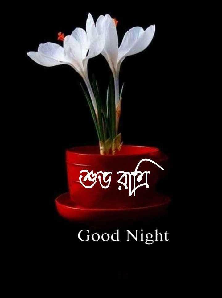 🌑শুভ রাত্রি - শুভ রাত্রি Good Night - ShareChat