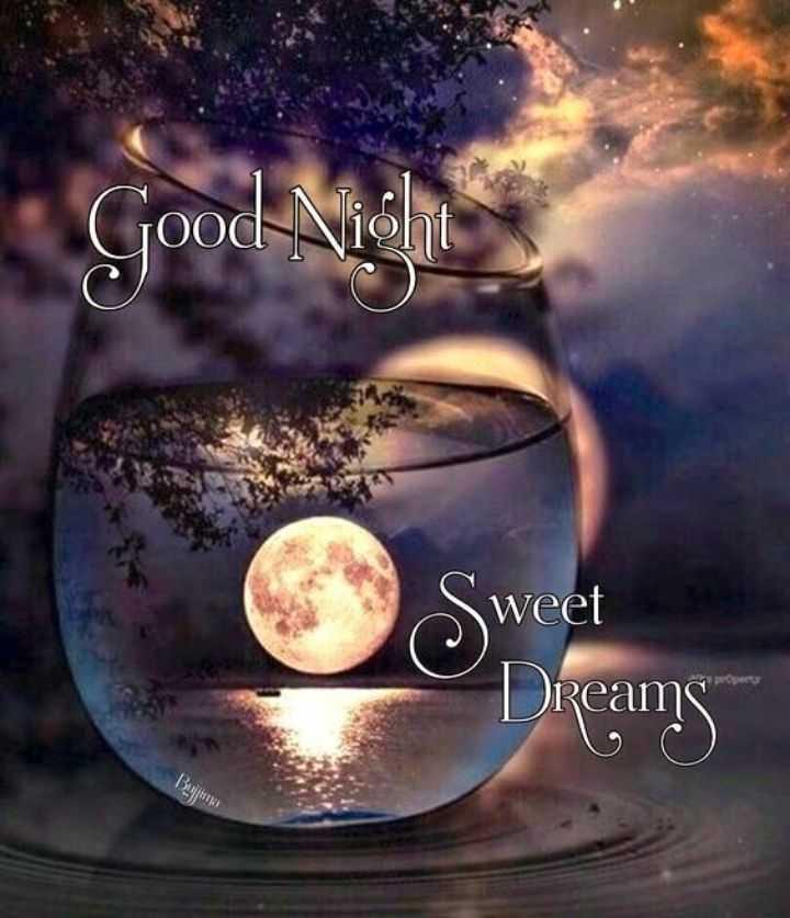 🌑শুভ রাত্রি - Sweet Dreams Bujina - ShareChat
