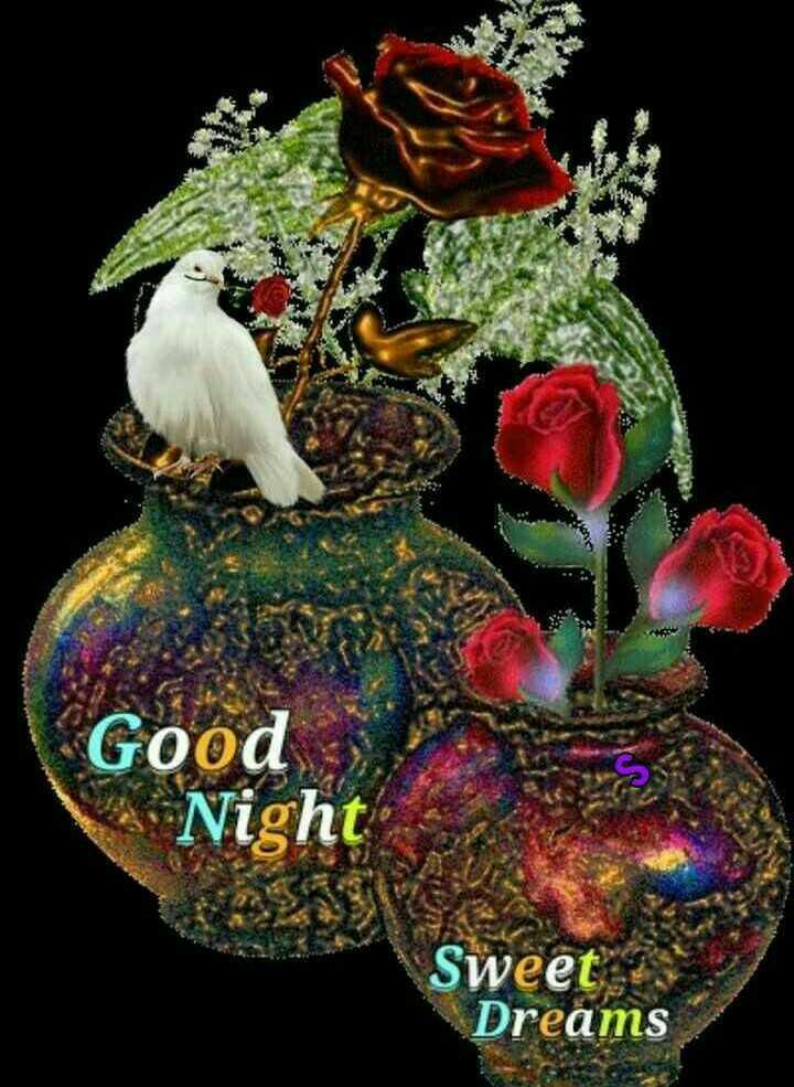 🌑শুভ রাত্রি - Good Night SEK Sweet Dreams - ShareChat