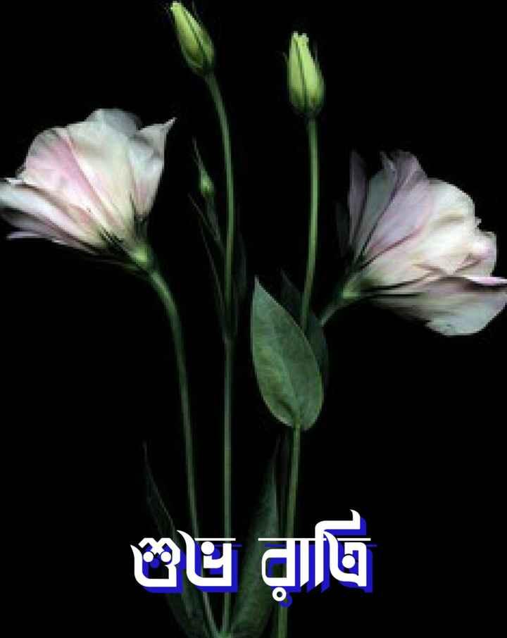 🌑শুভ রাত্রি - பைரில் - ShareChat