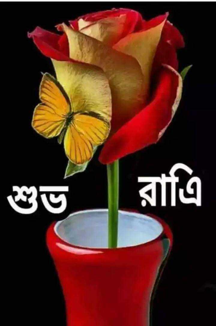 🌟🌟🌟শুভ রাত্রি 🌟🌟🌟 - শুভ রাত্রি - ShareChat