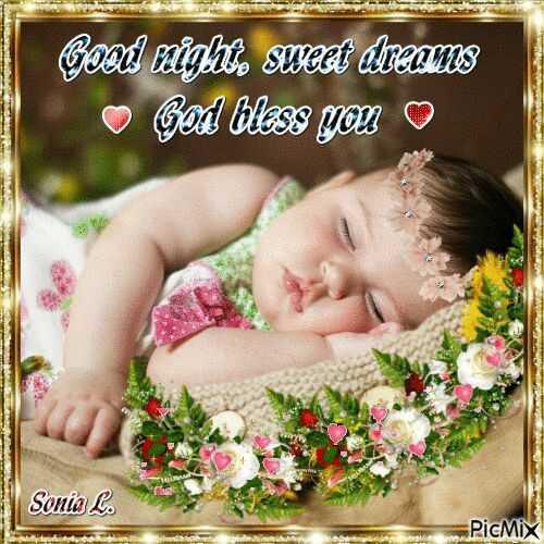 🌑শুভ রাত্রি - Good night . sweet dreams © God bless you Sonia L . PicMix - ShareChat