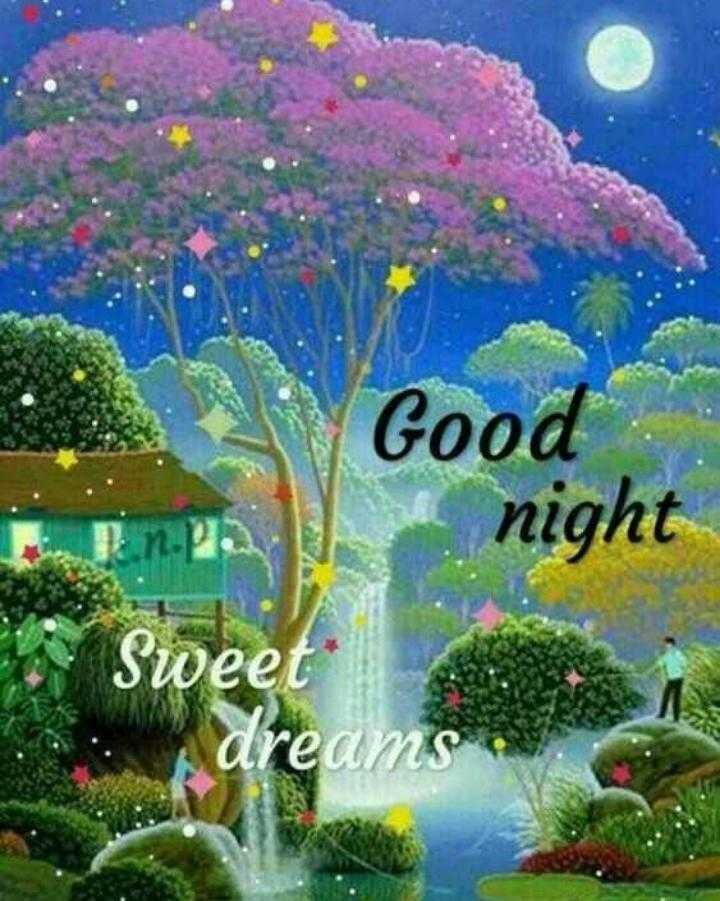 🌑শুভ রাত্রি - Good night Sweet dreams . - ShareChat
