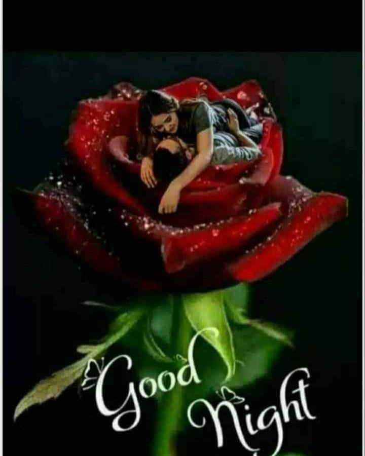 🌑শুভ রাত্রি - Good ) - ShareChat