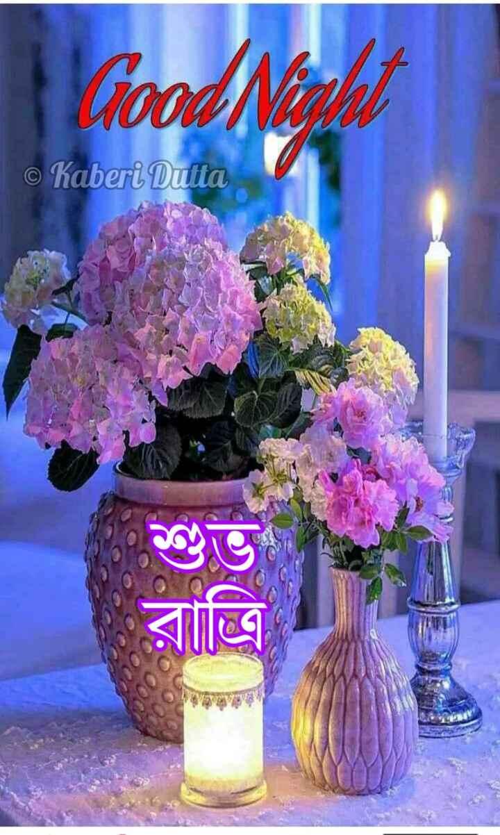 🌑শুভ রাত্রি - Good Night © Kaberi Dutta রাত্রি - ShareChat