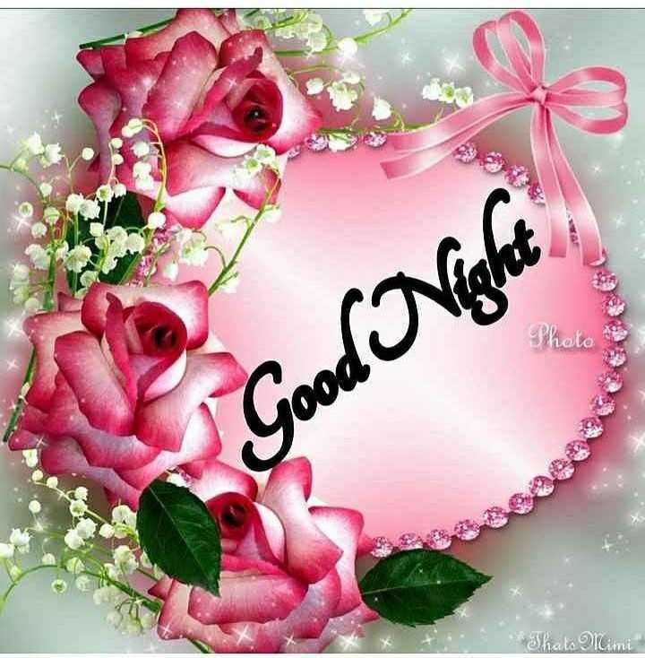 🌑শুভ রাত্রি - whold Good Night That Mimi - ShareChat