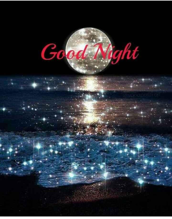 🌟🌟🌟🌟 শুভ রাত্রি 🌟🌟🌟🌟 - Good Night nepalaran - ShareChat